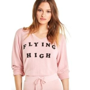 Wildfox Flying High Baggy Beach V Sweater Pink